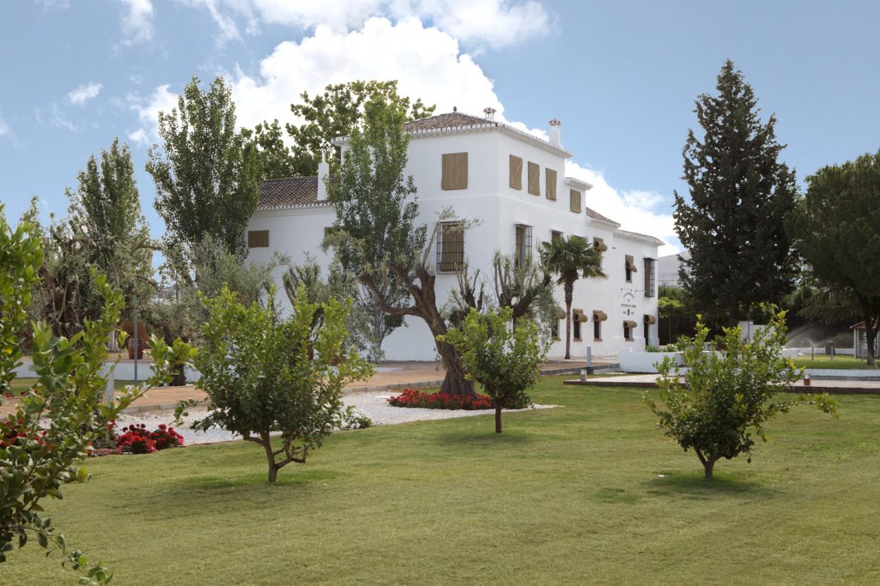 Cortijo Enmedio Granada -