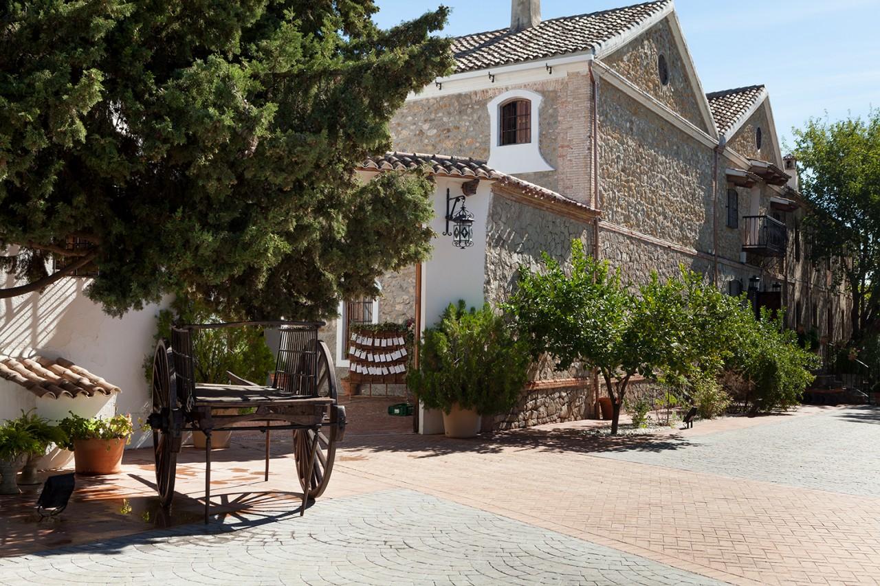 alameda-catering_cortijo-el-madrono_042 -