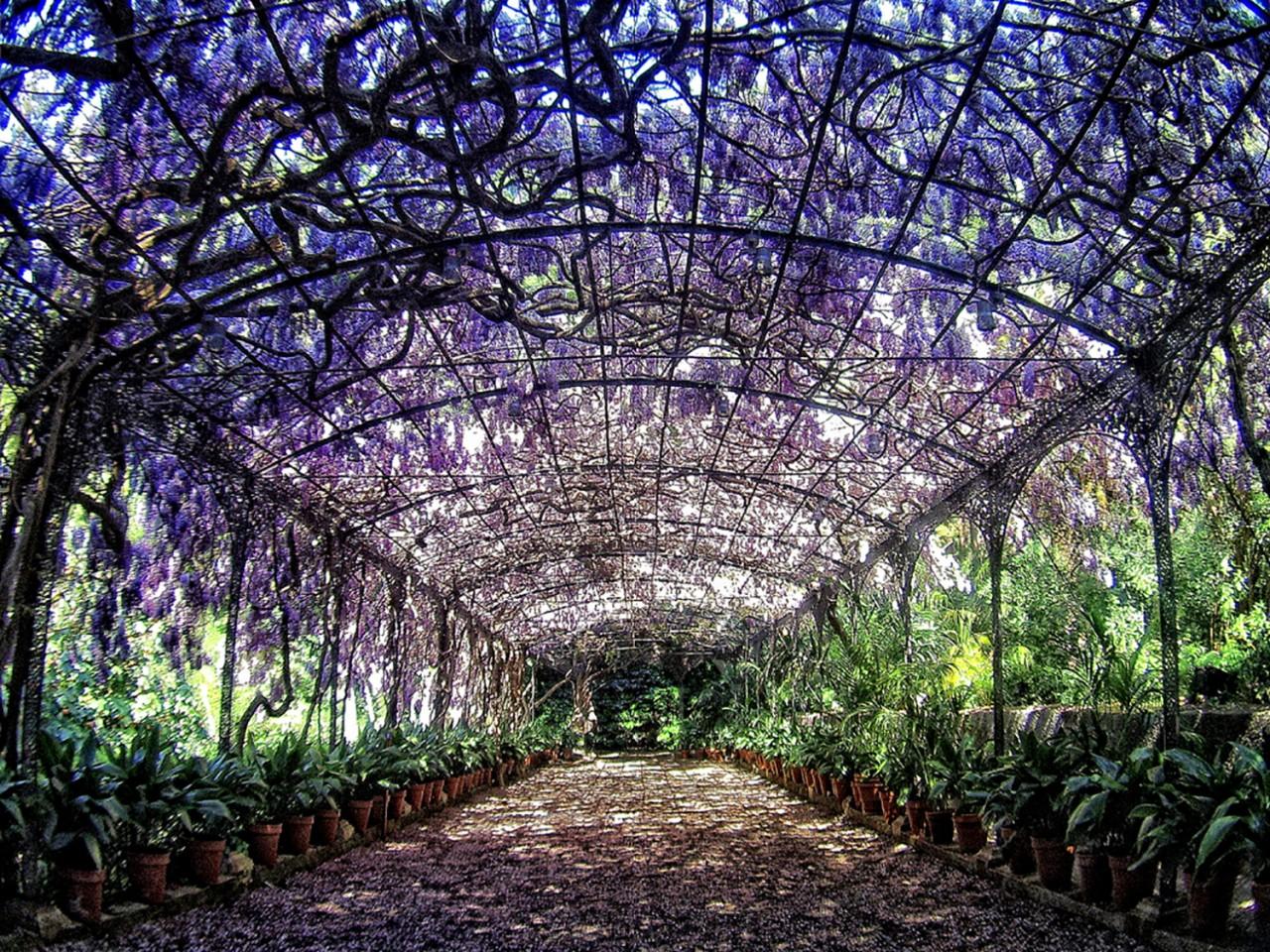 jardinbotanico_laconcepcion_03 -