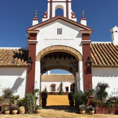 Hacienda-de-Medina_Alameda-Catering_16 | Fotografía de la Hacienda de Medina Sevilla