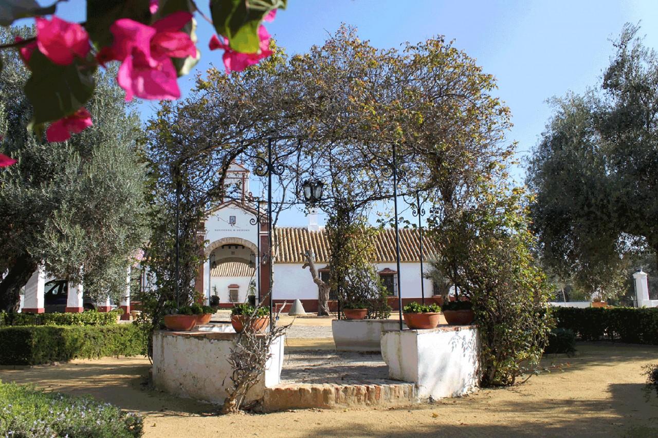 Hacienda-de-Medina_Alameda-Catering_18 - Fotografía de la Hacienda de Medina Sevilla